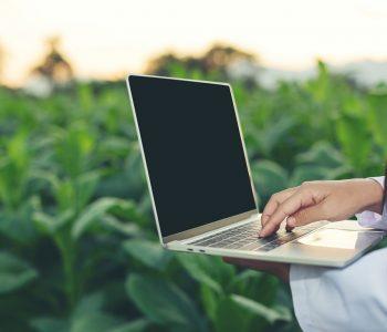 Como escolher internet para zona rural