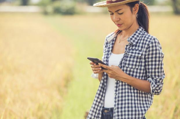 Internet para fazenda: descubra qual é a melhor tecnologia